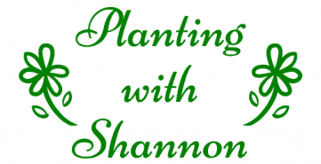 Planting With Shannon